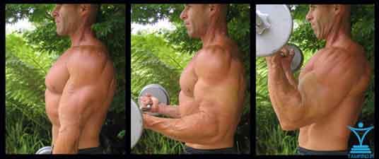 تکنیک 21 اس جلو بازو tamrino.ir