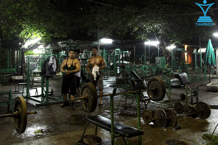 تمرین در شب باشگاه بدن ساز tamrino.ir