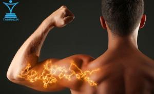 بدنساز جلو بازو قوی قدرت جالب tamrino.ir