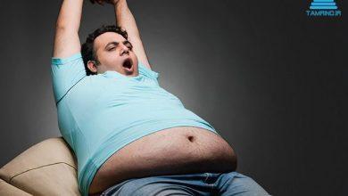 Photo of چرا چاق میشویم