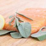گوشت پروتئین گیاهی tamrino.ir
