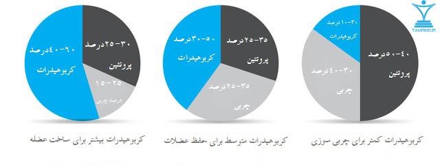 نسبت مواد غذایی