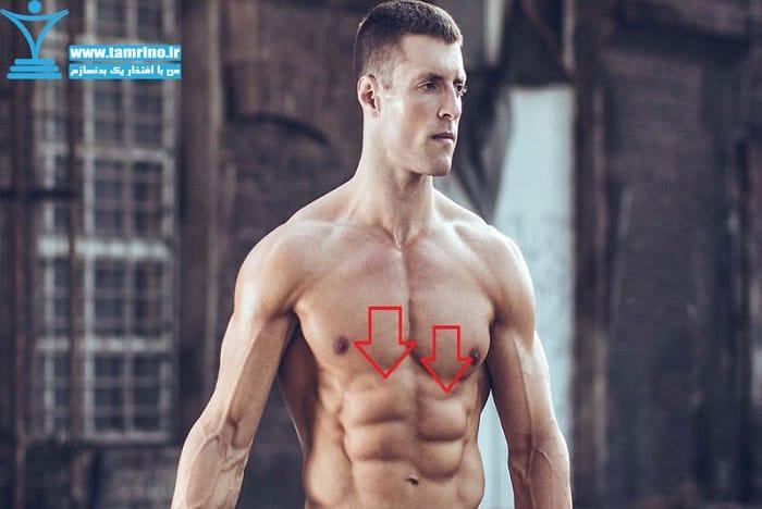 عدم تقارن عضلانی سینه