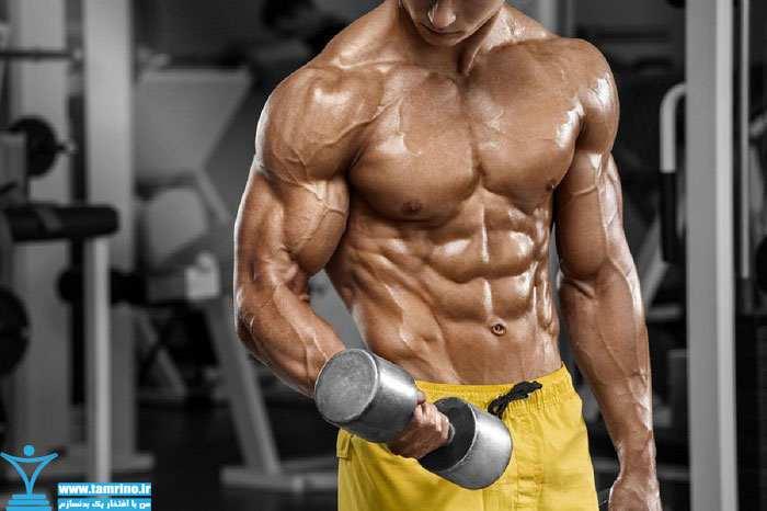 تبدیل عضله به چربی