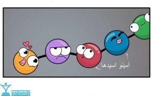 سنتز پروتئین