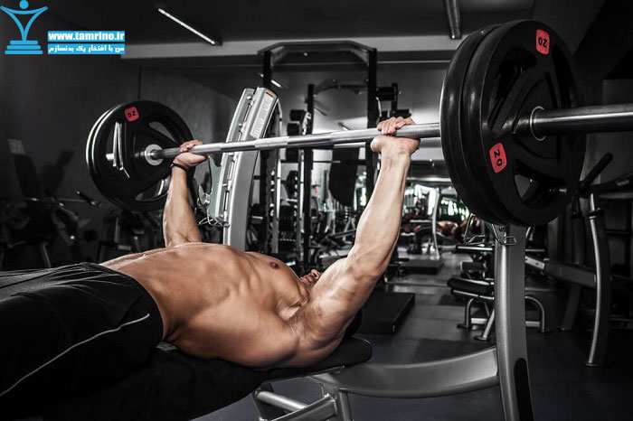 تمرینات قدرتی و سنتز پروتئین
