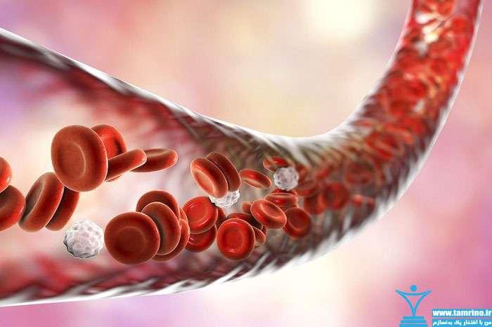 مکمل سیترولین