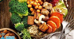 مواد غذایی زودهضم