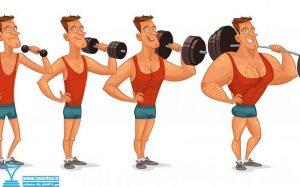 افزایش وزنه ها