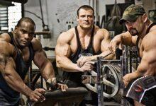Photo of چرا بعضی ها قدرت عضلانی بیشتری دارند