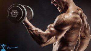 هیپرتروفی عضلانی