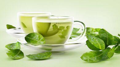 Photo of عصاره چای سبز را مصرف کنیم یا نه؟