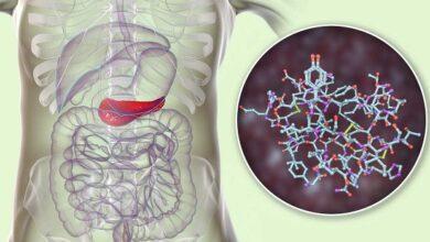 Photo of نقش گلیکوژن در بدنسازی