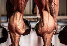 Photo of چطور ساق پا را رشد دهیم؟