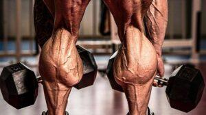 ساق پا