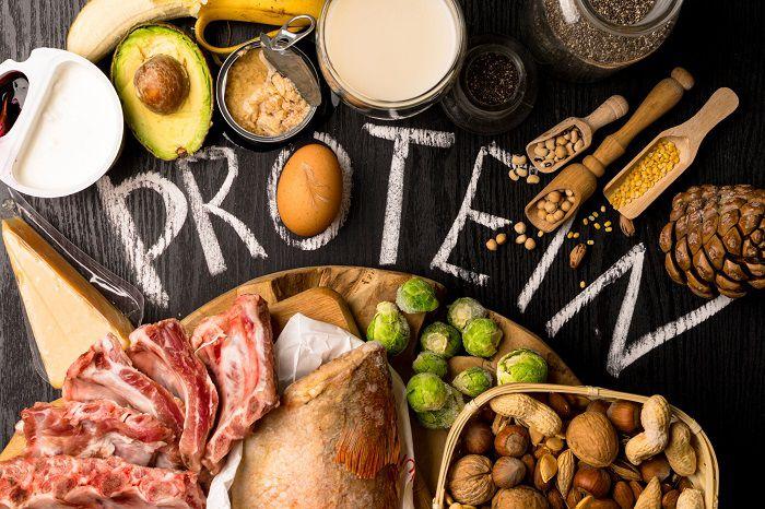 جذب پروتئین